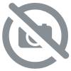 Digipack CD 2 Volets, Quadri, Plateau Transparent, Vernis Brillant ou Mate